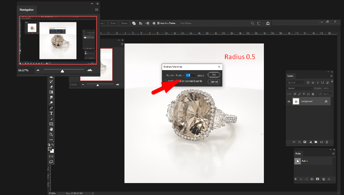 How to Use The Quick Selection Tool to Remove Background?